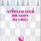 Chess equipment: Accelerated dragon chess book