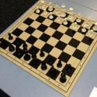 Fold-up Chess Set