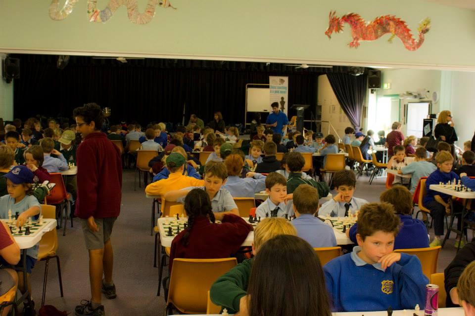 Curl Curl North Public School | Sydney Academy of Chess | 960 x 640 jpeg 78kB